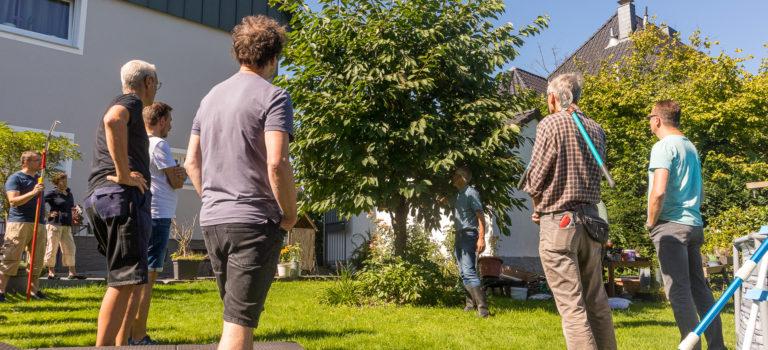Kronengerüst, Fruchtertrag: Jetzt wissen wir, wie man Obstbäume schneidet …